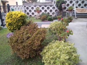 Villa unifamiliare in vendita - 170 mq