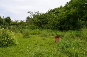 Terreno edificabile in vendita - 960 mq